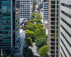 Streetscape Master Plan – Adelaide Street, Brisbane City