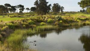 Nudgee Golf Course Master Plan – 36 Hole Redesign