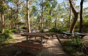Picnic Area & Walking Trails Upgrade – Toohey Forest, 600 Toohey Road, Nathan