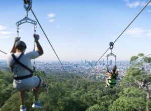 Council Approval – Ecotourism Zipline – Mt Coot-tha, Brisbane